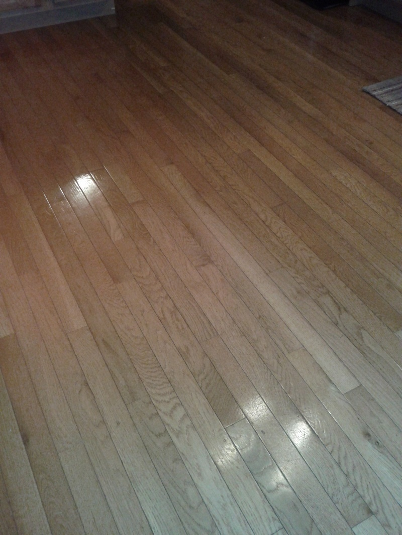 Diy Wood Floor Cleaner Plans Free Download Cheap66fhz